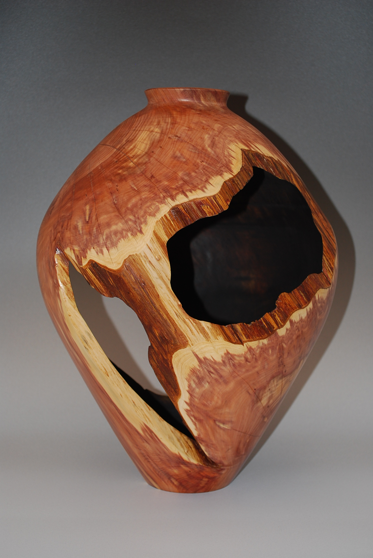 Cedar Hollow Form completed, Tree brought down by Hurricane Katrina, 2005